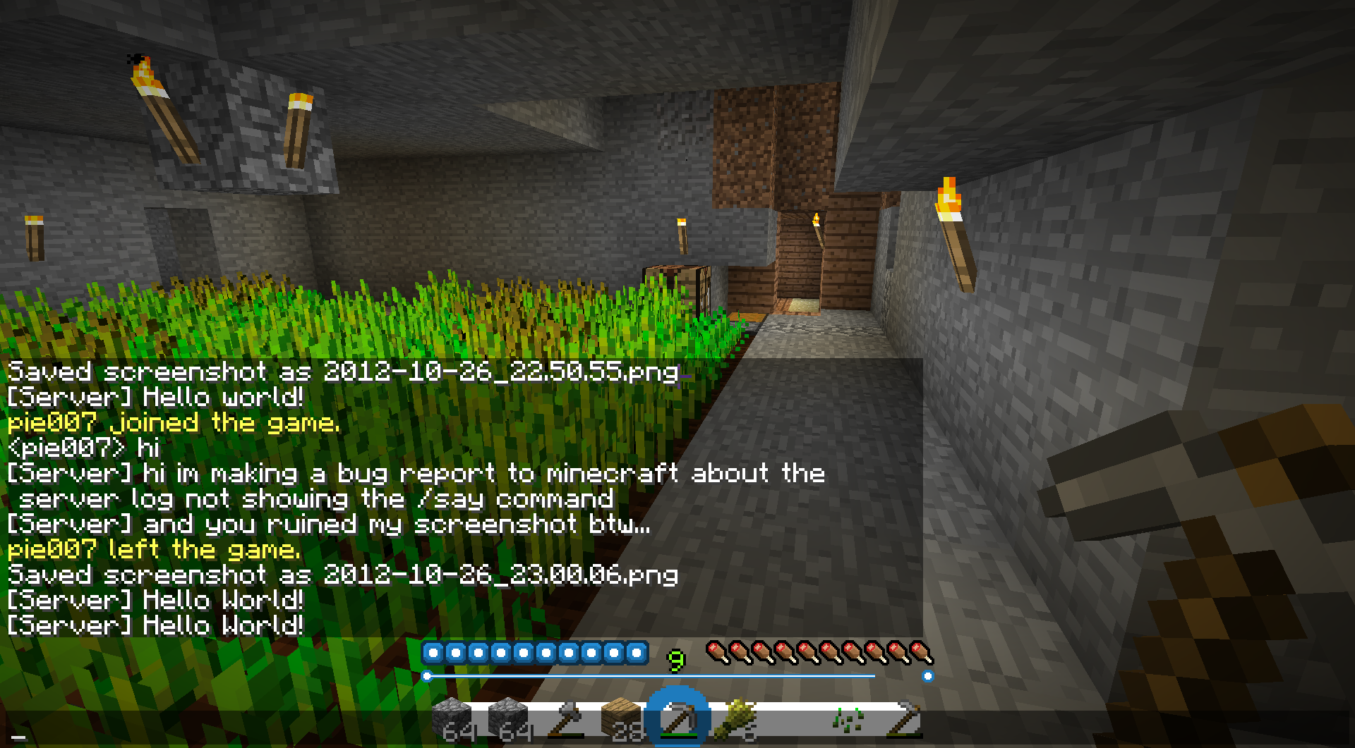 MC-12] In the server log, /say commands performed by the server