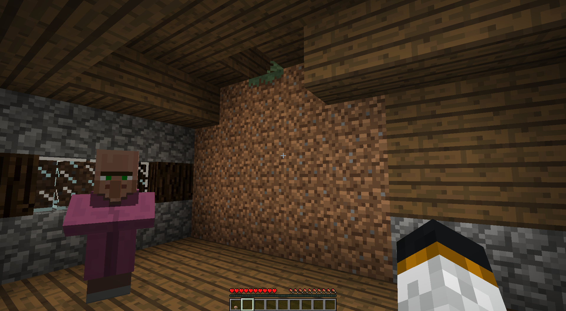 MC-109342] Big dirt walls in Large village house  - Jira
