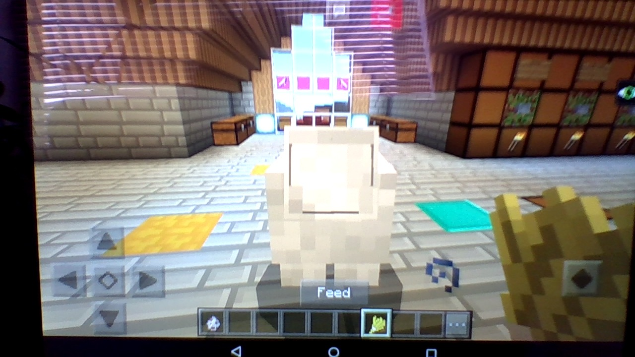 MCPE-21566] sheep with no legs or face - Jira