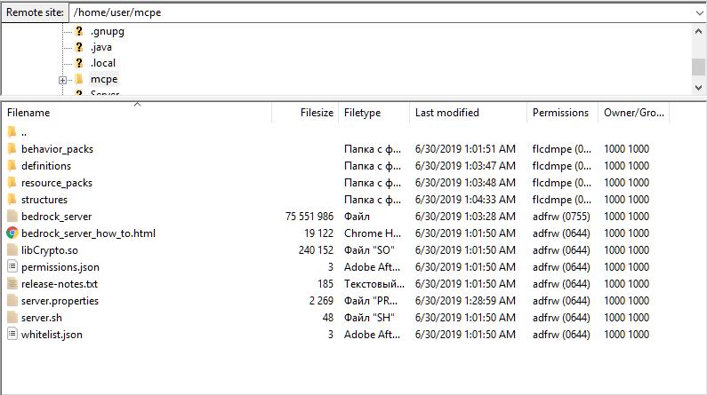 BDS-1043] Server Bedrock Edition (Segmentation fault (core