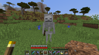 day-skeleton.png