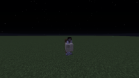mMinecraft bug 2.png