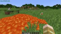 minecraft_bug.jpg