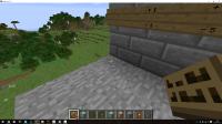 Minecraft Negative Bug.jpg