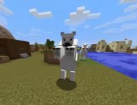 kutup ayısı.PNG