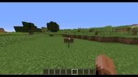 Minecraft Bug 16w32a.gif