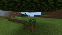 Block Update Bug.png