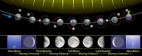 800px-Moon_phases_en.jpg