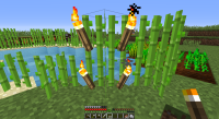 torches on sugercane.png