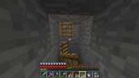 ladderbugpre4.png