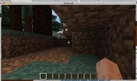 minecraft_shot_no_menu.jpg