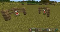 baby_chicken_fences.jpg