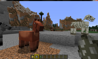 Horse Skin.jpg