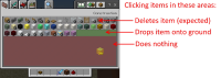 creative_inventory_item_bug.jpg