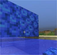 floating coral 5.jpg