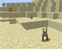 desert rabbits.jpg