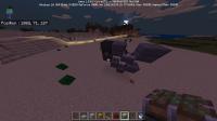 Minecraft 06_05_2018 11_53_47.png
