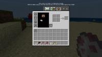 player_inventory_model.jpg