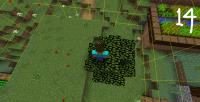 bug_14.png