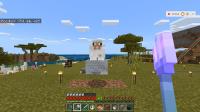 Minecraft 17-7-2018 21_16_30.png