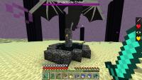 Ender_Dragon_bug (2).png