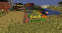 Minecraft bug picture.jpg