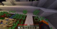 Minecraft1.1447asnapshotbug.png