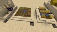 desert_farm_2.png