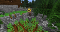 villager_trying_to_farm_but_stuck_in_barrier.jpg