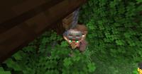 villager_stuck_in_lantern2.jpg