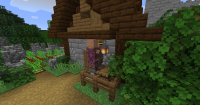 villager_stuck_in_lantern1.jpg