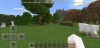 Screenshot_20190309-033151_Minecraft.jpg