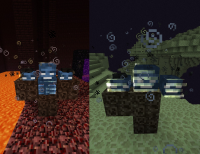 Wither in the Nether and End.jpg