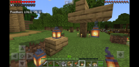 Screenshot_20190328-120340_Minecraft.jpg