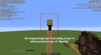 SuperflatSpawnEggProblems-19w14a-ExhibitL.png