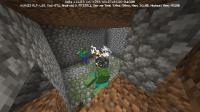 Screenshot_20190407_173647_com.mojang.minecraftpe.jpg