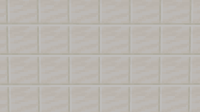 Expected texture.png