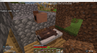 Minecraft Headless Villager in bed 20190418.png