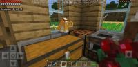 Screenshot_20190419-130856_Minecraft.jpg