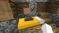 Screenshot_20190428-165810_Minecraft.jpg