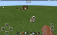 Screenshot_20190512-173631_Minecraft.jpg