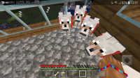 Screenshot_20190718-120200_Minecraft.jpg