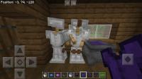 Minecraft Bug.jpeg