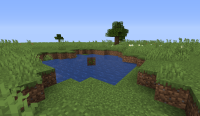 Minecraft bug 2.png