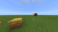 Screenshot_20191012-154740_Minecraft.jpg