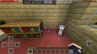 Screenshot_20191022-145752_Minecraft.jpg