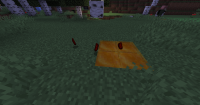 no shadow on honey block.png