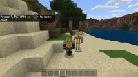 Minecraft 10_30_2019 With cape skin.png