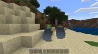 Minecraft 10_30_2019 no cape skin.png
