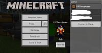 Minecraft Screenshot 2019.11.03 - 20.52.17.52.png